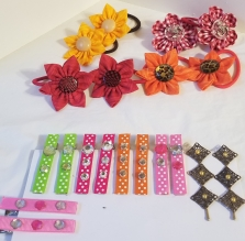 Hair Ties, Clips and Pins